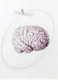 2015, Cerveau et satellite', stylo bille et aquarelle sur papier, 65x50cm