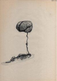 z 2013, éléphant et cerveau 1', stylo bille sur papier, 29,7x21cm